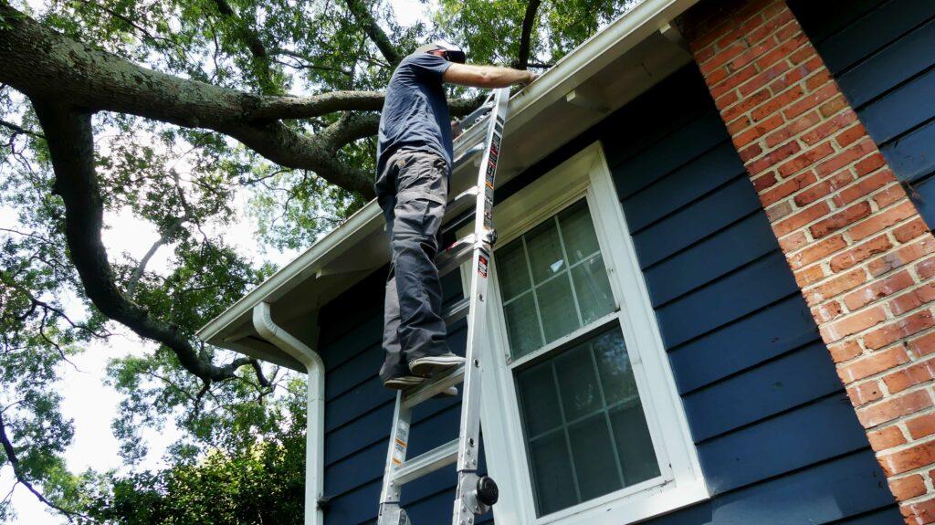 Gorilla Ladder Extended