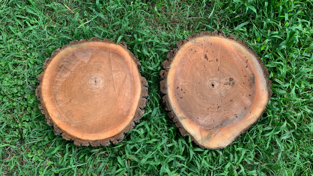 Walnut Wood Cookies